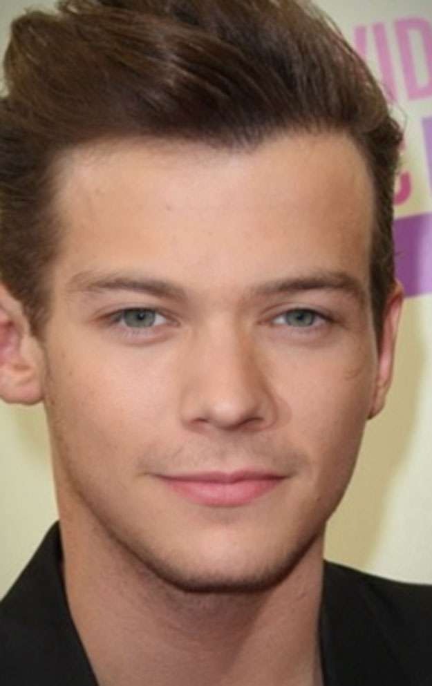 One Direction mashup facce - Louis e Harry