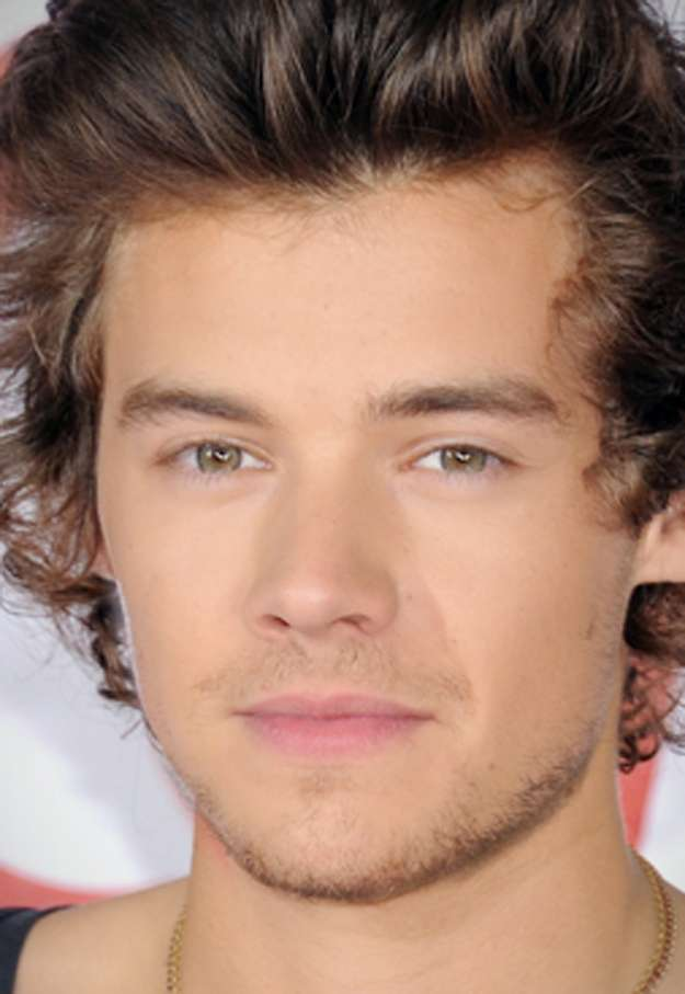 One Direction mashup facce - Harry e Liam
