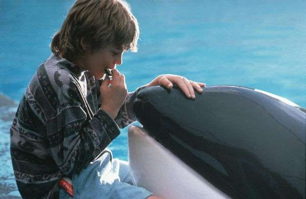 Film sugli animali: Free Willy