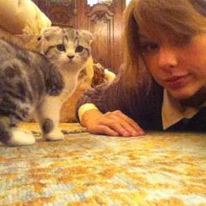 Taylor Swift con la sua gattina