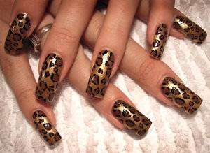 Coffin nail art animalier